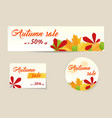 set of autumn sale banners vector image