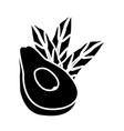 avocado half cut vector image vector image
