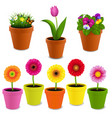flowers in pot collection vector image vector image