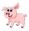 pig cartoon character design isolated on white vector image vector image