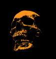 scull portrait silhouette in contrast backlight vector image vector image