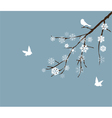 snow branch vector image vector image