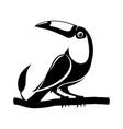 black toucan bird sign vector image vector image