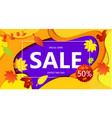bright banner autumn sales with leaves in yellow vector image