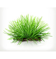 Fresh grass icon vector image vector image