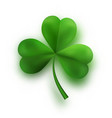 green tree leaf clovers irish lucky and success vector image vector image