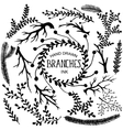 Hand drawn branches vector image vector image