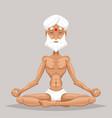 meditation elderly old yoga master wisdom health vector image vector image