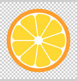 orange fruit icon in flat style orange citrus on vector image vector image