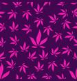 seamless pattern of pink hemp leaves on a purple vector image