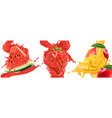 splash juice watermelon strawberry mango vector image vector image