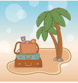 suitcases vacations on beach scene vector image vector image