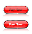 pay now button shiny red oval web icons normal vector image
