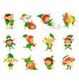 elf winter season helper of santa claus vector image vector image