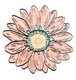 isolated vintage flower vector image vector image