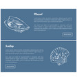mussel and scallop vintage vector image