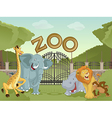 Zoo with african animals vector image vector image