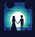 silhouette of couple at night vector image