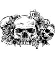 a human skulls with roses on white background vector image vector image