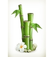 Bamboo icon vector image