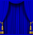 blue curtain with gold tassels vector image vector image