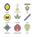 color superfood line icons set vector image vector image