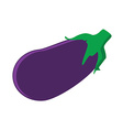 Fresh vegetable eggplant vector image