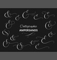 set of custom decorative ampersands isolated on vector image vector image