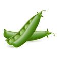 peas object