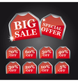 big sale tags vector image