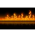 Fire flames on black background vector image vector image