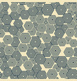 pattern is seamless geometric hexagon vector image vector image