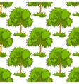Seamless pattern of leafy green trees vector image vector image