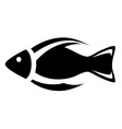 isolated icon fish symbol vector image