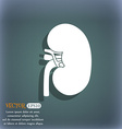 Kidney icon On the blue-green abstract background vector image