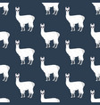 llama in glasses seamless pattern vector image