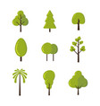 set trees icon symbol and shapes isolated in vector image