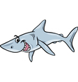shark animal cartoon vector image