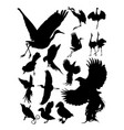 silhouette birds vector image vector image