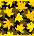 beautiful seamless doodle pattern with yellow vector image vector image
