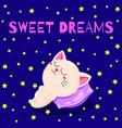 cute cartoon with a sleeping kitten vector image vector image