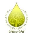 Olive oil label or emblem vector image vector image