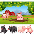 pig in nature farm vector image vector image