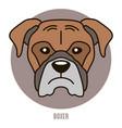portrait boxer vector image vector image