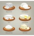 Roquefort and mozzarella feta or camembert vector image