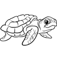 sea turtle coloring book vector image vector image