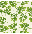 seamless parsley pattern vector image