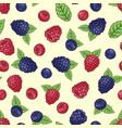 seamless pattern wild berries vector image