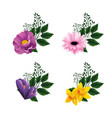 set exotic flowers with branches leaves vector image vector image