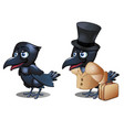 the raven in the clothing with suitcase and hat vector image